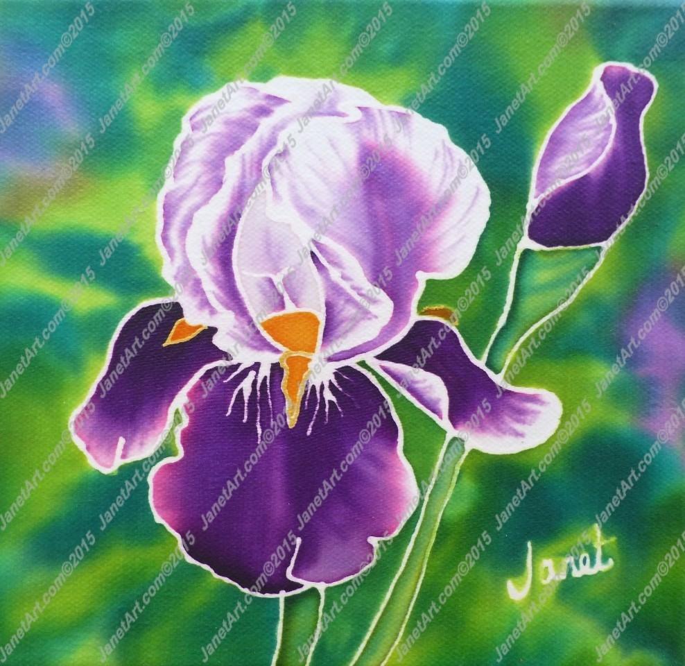 Purple iris on silk janet art purple iris on silk izmirmasajfo